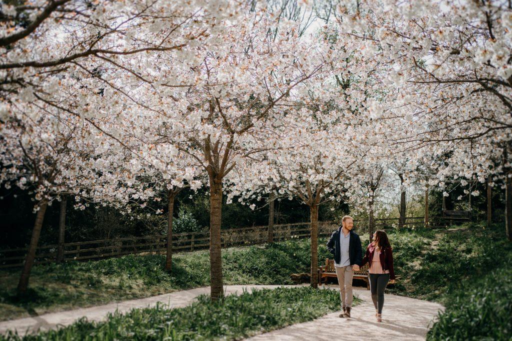 Alnwick Gardens Wedding Photographer 001